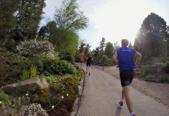 TrailVarvet gikk i idylliske omgivelser, som her gjennom Botaniska Trädgården, i Göteborg. (Foto: Bjørn Johannessen)