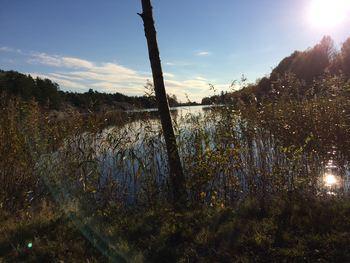 Natur vann og sol