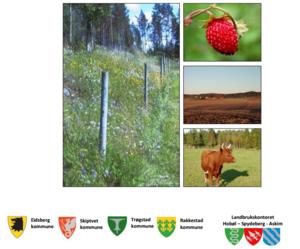 Bilde av forside Informasjon til nye gårdbrukere.pdf
