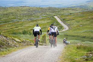 Fra Femundrittets høyeste punkt på Luvhøa 988 moh. (Foto: Ola Matsson)