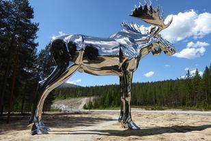 Midt mellom Oslo og Trondheim står verdens største elg, Storelgen fra Stor-Elvdal. Sølvblank og over 10 meter høy ruver den i skogen langs riksveg 3 på Bjøråa rasteplass. (Foto: storelgen.no)