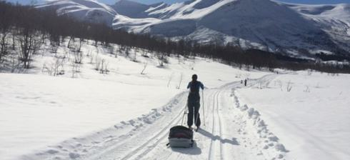 Nå er det skiføre i marka. For oversikt over oppkjørte løyper, sjekk loyper.net.  Illustrasjonsfoto: Friluftsrådet