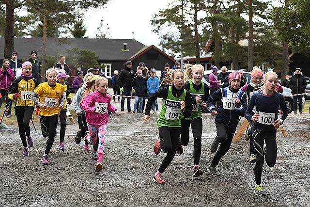 51ab6f00 Starten for yngste jenteklasse, K11 og K12. (Alle foto: Bjørn Johannessen)