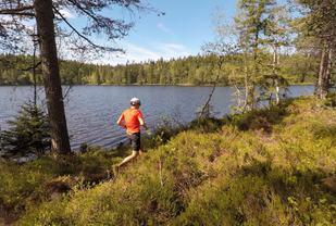 Blåsti_langs_Fagervann