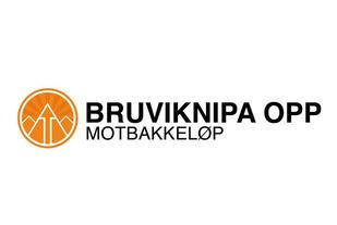 Bruvikinpa Opp logo 640-427