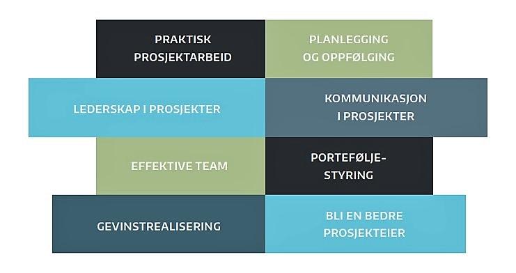 Prosjektkurs_Prosjektuka2017 (002).jpg