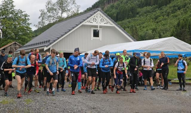 03_Halvmaraton Foto Arve Hauglan.jpg