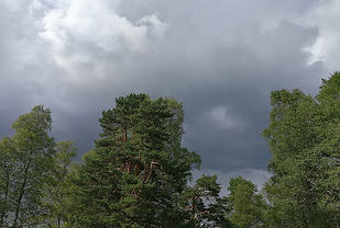 Mørke skyer over Sognsvann