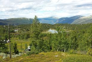 Vakker utsikt. (Foto: Sten Arne Negård)