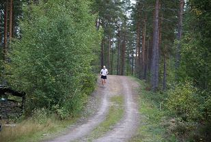 Fra en tidligere utgave av Finnskogløpet. (Foto: Lunderseter IL)