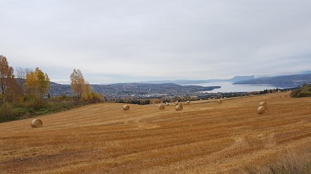 Utsikt-fra _Veldre_kirke.jpg