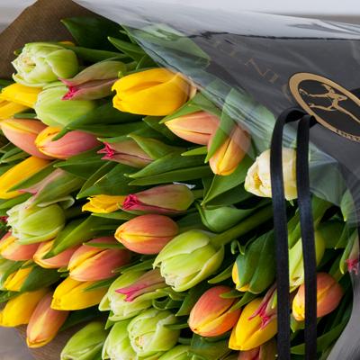 Gavepakkede tulipaner.jpg