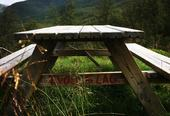 Sommerbilde av hvilebenk i skogen