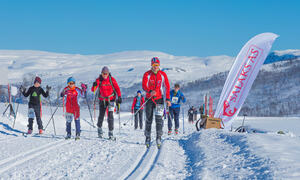 Turskiløpere i skisporet