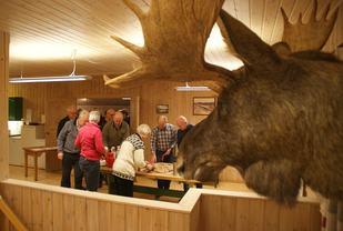 Skogens konge holder et godt øye til serveringsbordet. (Foto: Stein Arne Negård)