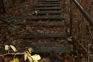Bortgjemt mellom Nydalen T-banestasjon og Blåsbortveien finnes det en trapp med 111 trinn som kan brukes til trappetrening.