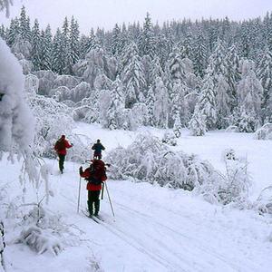 Fjerdingbydammen - vinter