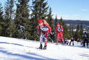 Artikkelforfatteren på veg opp Kvarstadlia på blanke ski under fjorårets Birkebeinerrenn. (Foto: Stein Arne Negård)