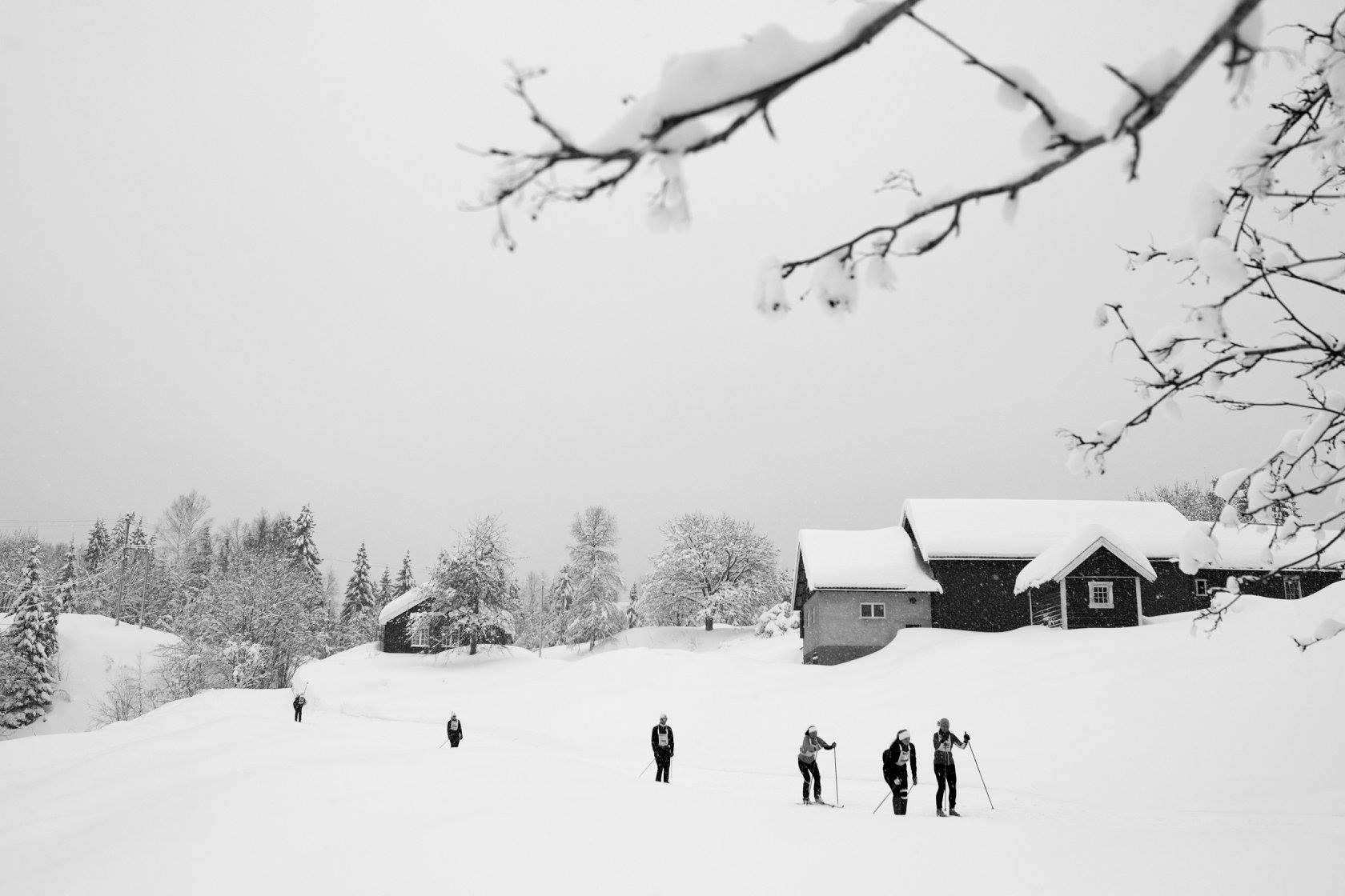 04_Fyllingen og bakkene opp til Appelsinhaugene_foto_Magnus_Nyløkken:Skiforeningen.jpg