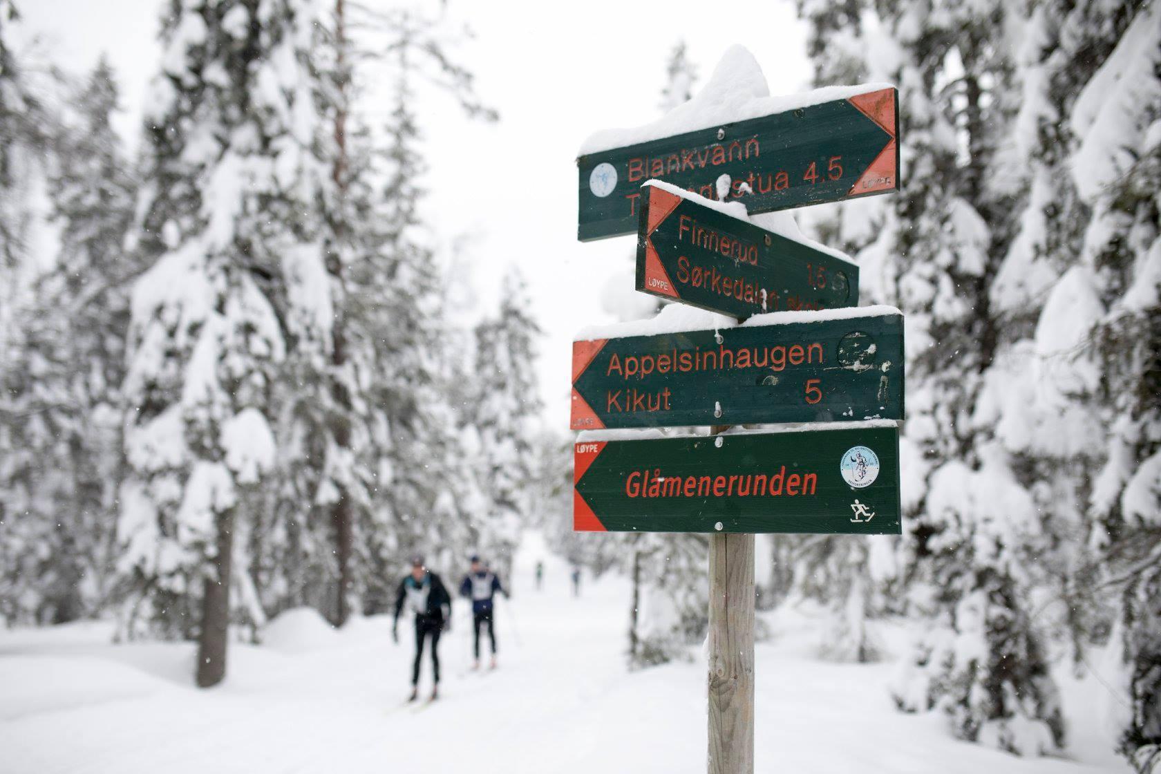 05_skilt_foto_Magnus_Nyløkken:Skiforeningen.jpg