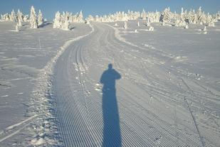 Rolf_Bakken_Flott_skiterreng