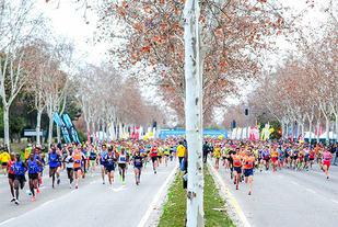 Starten har gått for årets Sevilla Marathon der 9494 løpere tok seg til mål. (Foto: arrangøren)