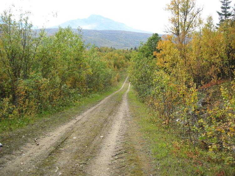 Søke tilskudd til skogsveibygging