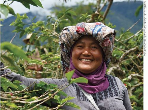 Kaffedyrker - World Fairtrade Challenge