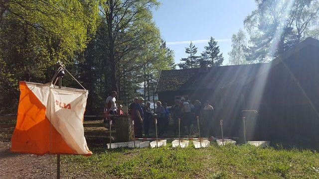 Sommervarme i Moskogen i Moelv. (Foto: Stein Arne Negård)