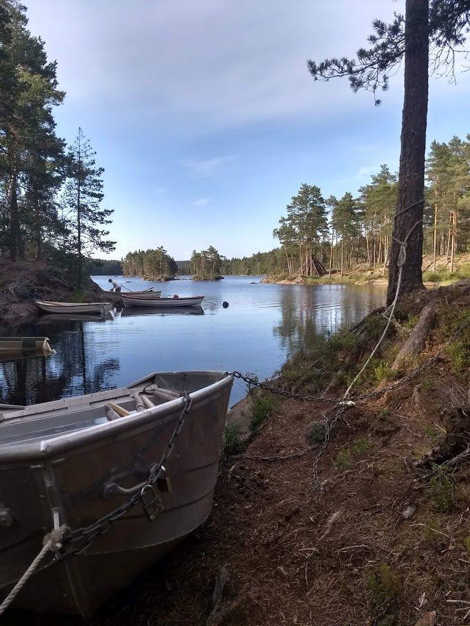 Frønesjøen