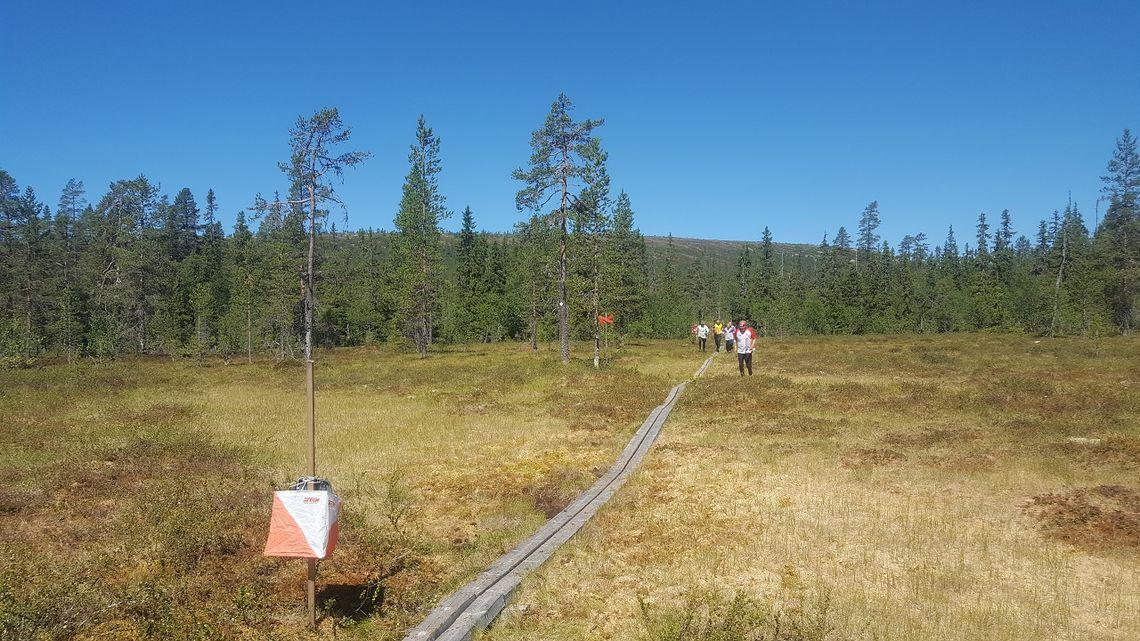 Innspurten på søndagens løp I Sälen. (Foto: Stein Arne Negård)