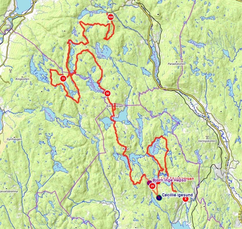 200km_tracking_4timer.jpg