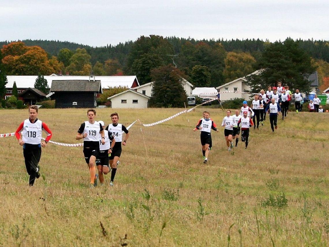 Løpere på rekke og rad bak over åkeren på Slåstad i fjorårets løp. (Foto: Dølisjøens facebookside)