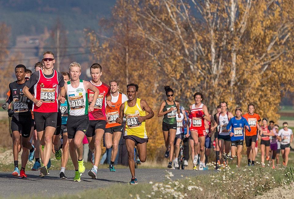 Etter 6 km: Vi ser et stort felt med mange som løp fort; både ungdommer, veteraner og kvinner. I tet ser vi tre ungdommer; Fredrik Sandvik (1433), Simon Steinshamn (2225) som ble nr. 2 i junior-NM i terrengløp forrige helg og vinneren av klasse 16-17 år, Martin Kirkeberg Mørk (910), som løp på gode 31.19.  Lengre bak ser vi både Meraf Bahta og Karoline Bjerkeli Grøvdal som løp seg inn på 3. og 4. plass på Europa-statistikken på 10 km og et sted mellom dem ser vi Øystein Mørk (1991), 44-åringen fra Lier som løp fortest av 818 mannlige veteraner. (Foto: Ole Arne Schlytter)