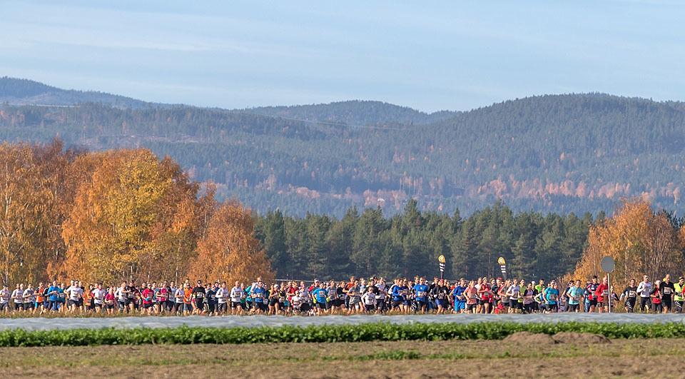 Hytteplanmila vokser år for år og det er nå tett i tett med løpere gjennom hele løypa.  Foto: Ole Arne Schlytter