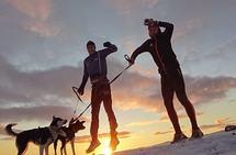 Liker mørketida: Daniel Strand (t.h) liker å trene ute når det er kaldt og glitrende nordlys. Her sammen med Petter Eliassen og hundene. Foto: Privat