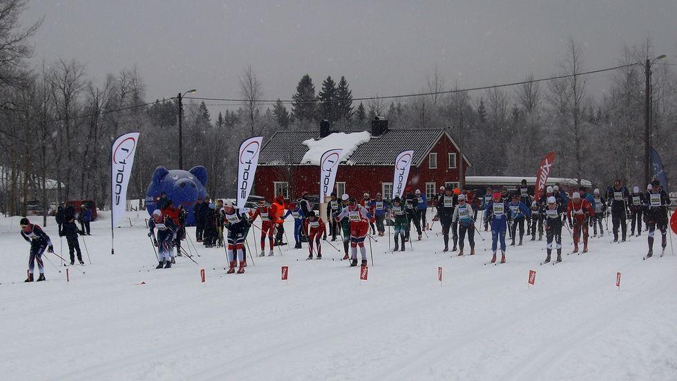 Start_halvmaraton