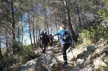 Mange går med staver på fjellturene i Costatrimmen. Foto: Heming Leira