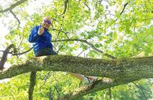 Om eg sjølv likar å klatre i tre, så er det ikkje sikkert eg skal prøve å overtyde alle andre om å gjera det same. (Foto: Bjørn Johannessen)