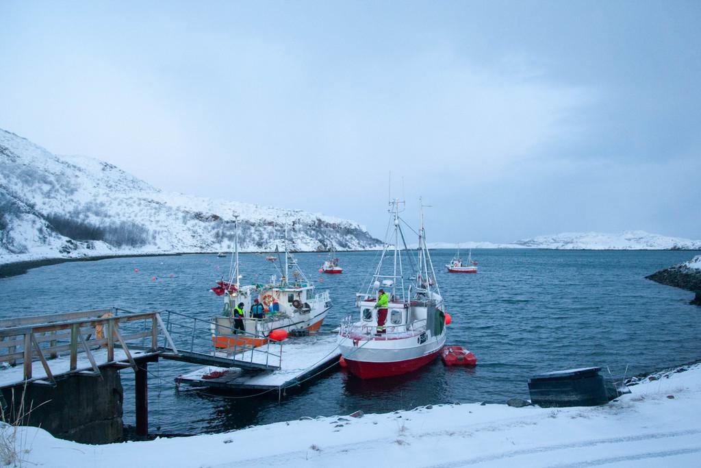 Fiskebåter i havna.jpg
