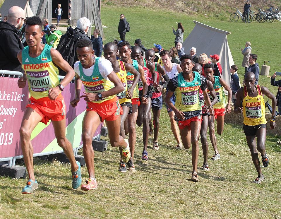 Afrikanerne vil nok dominere også i en terrengstafett med etapper på 2,5 km, men kanskje kunne et norsk lag med to blad Ingebrigtsen, en Grøvdal og en Johaug henge med? (Foto: Kjell Vigestad)