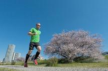 Artikkelforfatteren på løpetur i en av Tokyos mange parker mens kirsebærtrærne blomster. (Alle foto: Bjørn Johannessen)