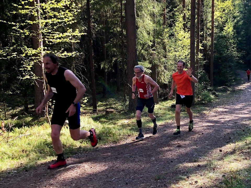 Finn Ansgar Haneberg (til h.) i Gå-joggen på Ilseng i fjor bak Jan Erik Mathiassen og Øystein Syversen. (Foto: Marit Aamdal)