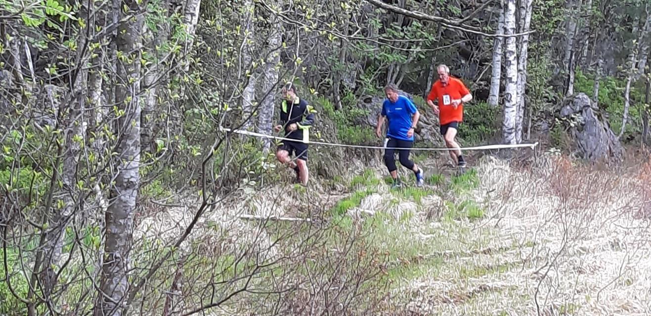 Løpere_i_Skauen.jpg