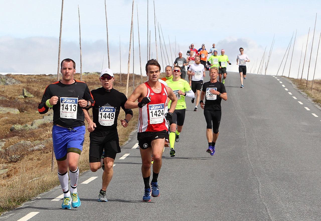 Halvmaratonloepere_ned_fra_Flya_i_2017__foro_Kjell_Vigestad_1280_A20G8137.jpg