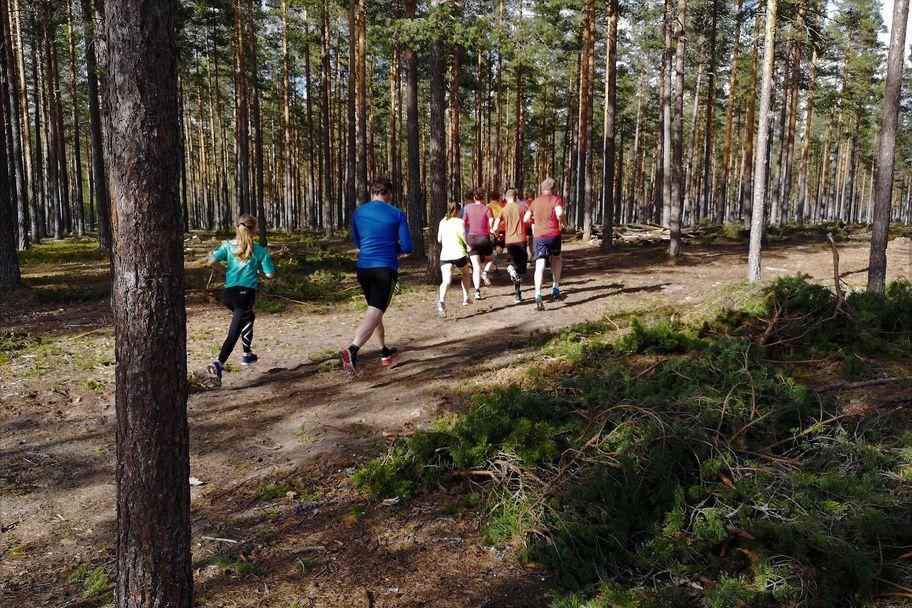 Gaa-joggen_Stavaasen (2)