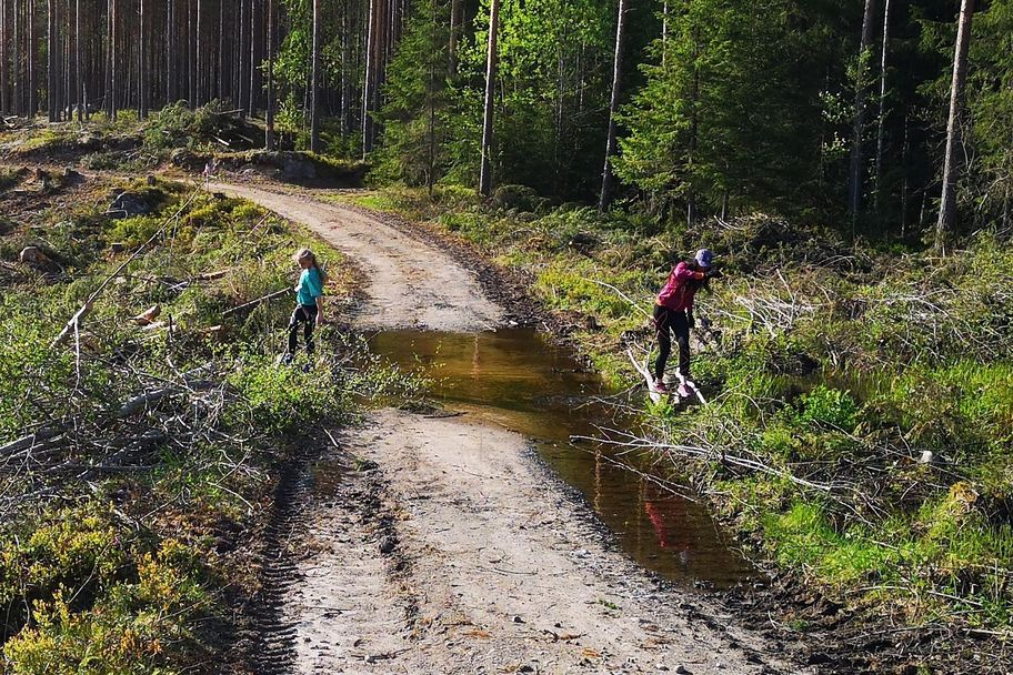 Gaa-joggen_Stavaasen (7)