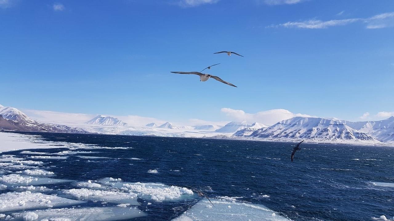Isabel_på_Svalbard_2 (1280x720).jpg