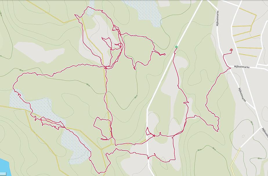Arne_Dag_tracking