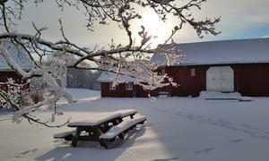 Bygdetunet i vinterdrakt Foto May-Lene Rødland Jenssen